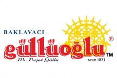 img_0_gulluoglu