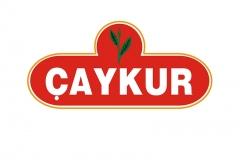 img_0_caykur