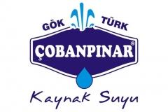 img_0_cobanpinar